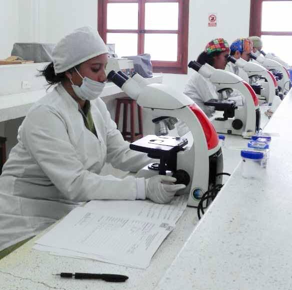Jornada diagnóstica Bacteriología 2019