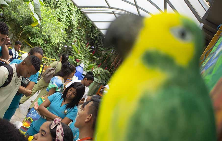 Jornada contra el consumo de especies en extinción en Semana Santa