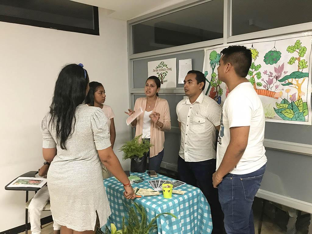 Creatividad e innovación en los proyectos finales de estudiantes del programa de Contaduría Pública.