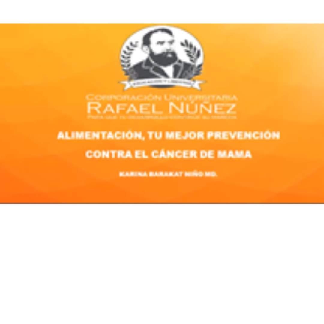 """Se desarrolló virtualmente en la Núñez la III Jornada: """"Jardín de las mamas, a tiempo es mejor""""."""